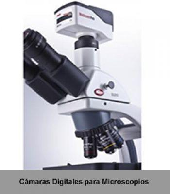 Metalografía, Petrografía, Microscopía y Análisis de Imágenes, CIENTEC