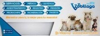 veterinaria en colima