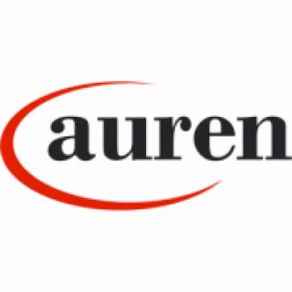 Auren México   Contadores, consultores y abogados