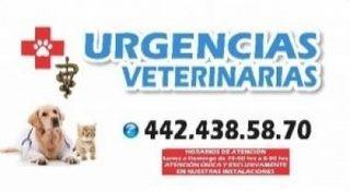 CLINICA DE URGENCIAS VETERINARIAS