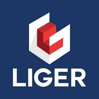 LIger Telecomunicaciones